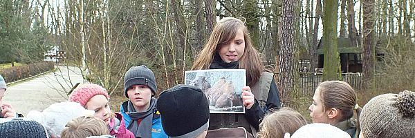 Wędrówka po zoo dla przedszkoli i zerówek