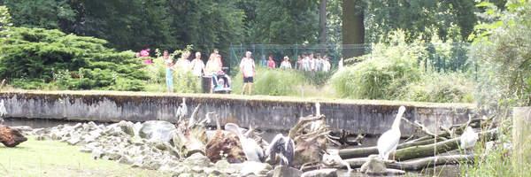 eG Wohnen unterstützt den Tierpark