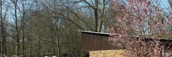 Frühling im Tierpark/Wiosna w zoo
