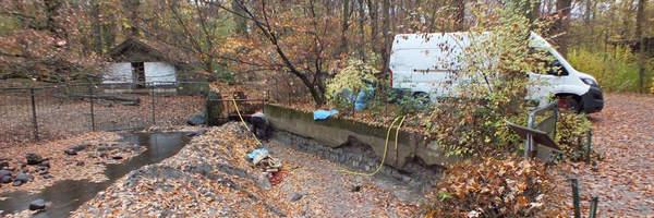 Mauersanierung bei den Wildschweinen - Renowacja muru na wybiegu dzików